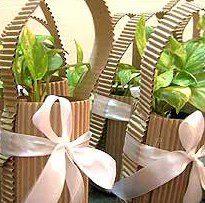 organic-wedding-favour